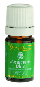 EucalyptusBlue